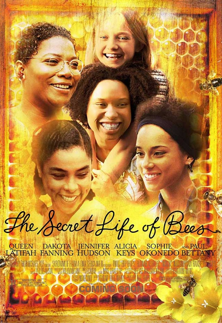 Image result for secret life of bees movie